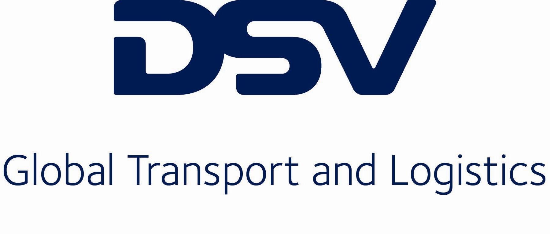 dsv_logo_jpeg__copy_1799